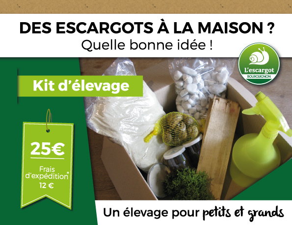 Kit d'élevage d'escargot
